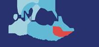logo longnet